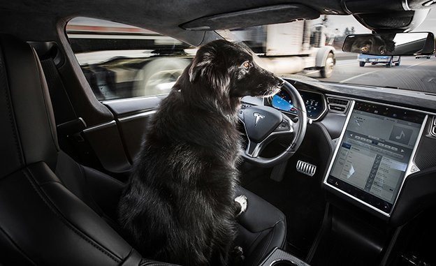 Tesla on autonomous driving mode