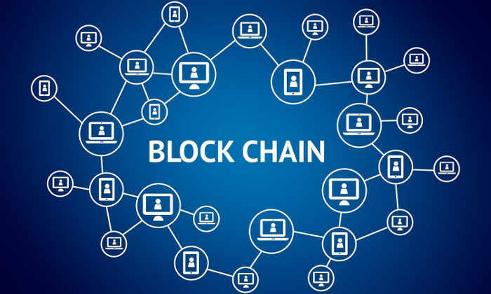 Crypto networks description
